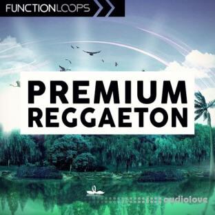 Function Loops Premium Reggaeton