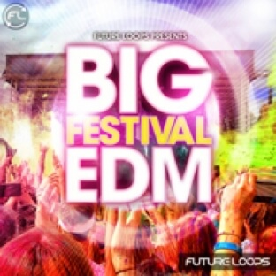Future Loops Big Festival EDM