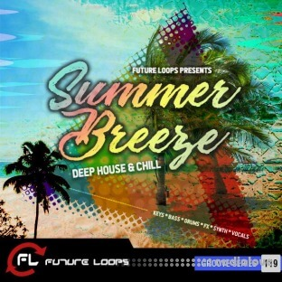 Future Loops Summer Breeze