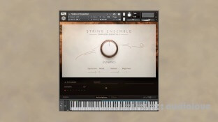 Native Instruments Symphony Essentials String Ensemble