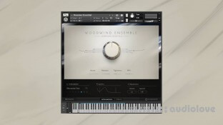 Native Instruments Symphony Essentials Woodwind Ensemble