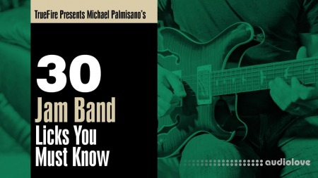 Truefire Michael Palmisano 30 Jam Band Licks You Must Know