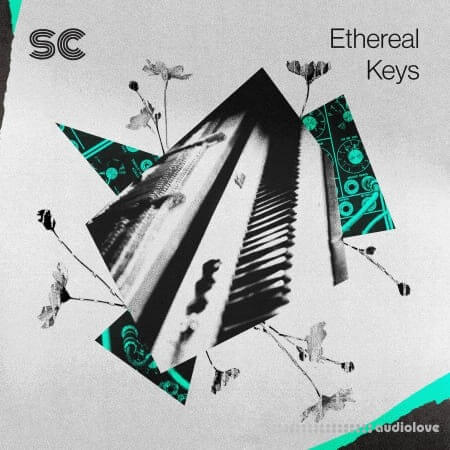 Sonic Collective Ethereal Keys