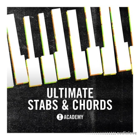 Toolroom Ultimate Stabs And Chords