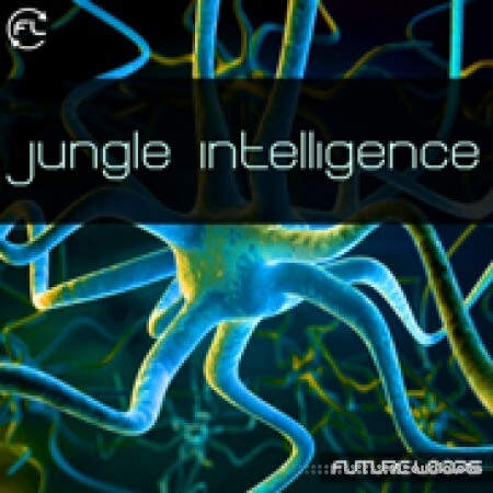 Future Loops Jungle Intelligence