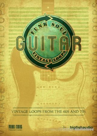 Big Fish Audio Vintage Guitar Loops