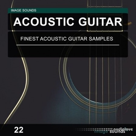 Image Sounds Acoustic Guitar 22