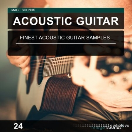 Image Sounds Acoustic Guitar 24
