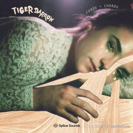Splice Sounds Tiger Darrow Cords And Chords