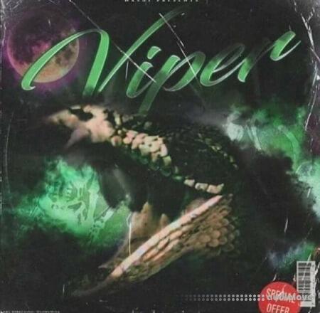 Nashi Viper Drum Kit