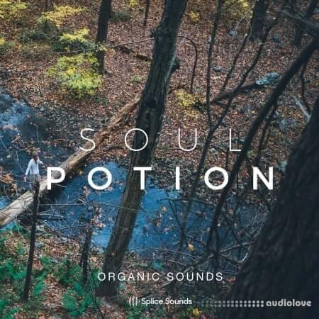 Splice Sounds Soul Potion Organic Sounds