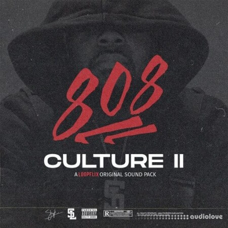 Stve Lawrence 808 Culture 2