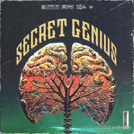Cartel Loops Secret Genius
