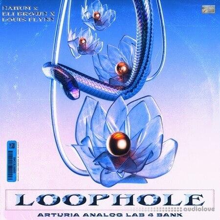 Loophole Arturia Analog Labs 4