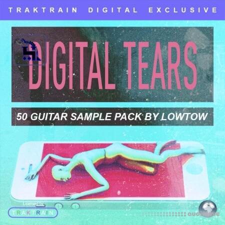 TrakTrain Digital Tears by LOWTOW