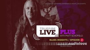Truefire Matt Schofield Live Plus Blues Insights Ep.02