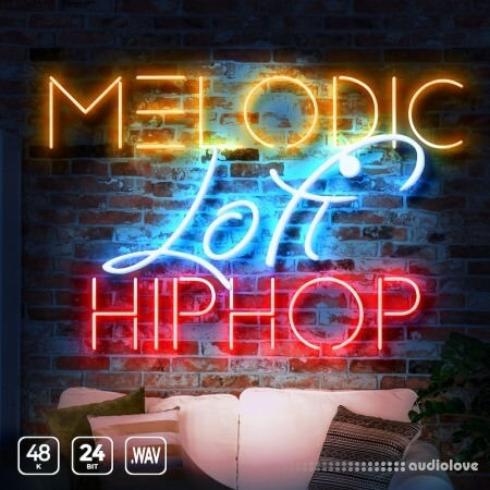 Epic Stock Media Melodic Lofi Hip Hop