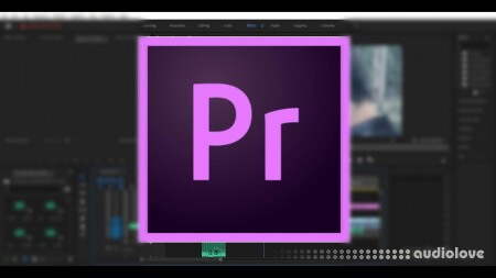 SkillShare Adobe Premiere Pro 2020 Crashcourse To Start Editing