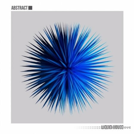 Abstract Liquid House