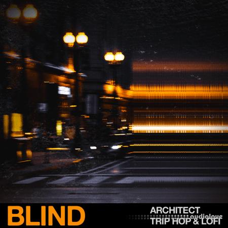 Blind Audio Architect Trip Hop and Lofi