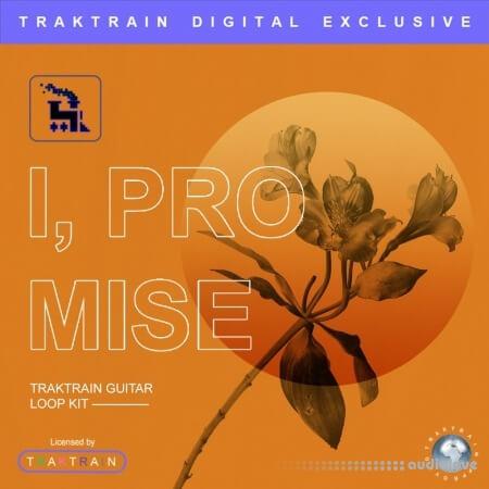 TrakTrain I promise WAV