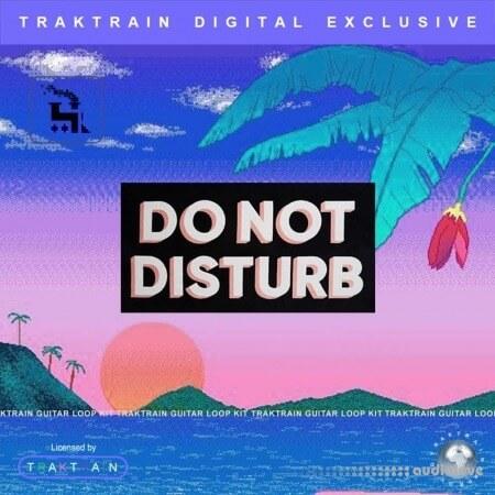TrakTrain Do Not Disturb Guitar Loop Kit