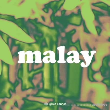 Splice Sounds Malay Sample Pack