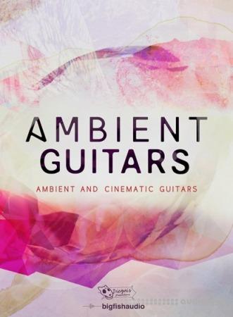 Dieguis Productions Ambient Guitars KONTAKT MULTiFORMAT