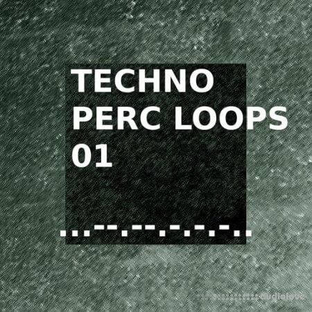 SQNCD Sounds Techno Perc Loops 01