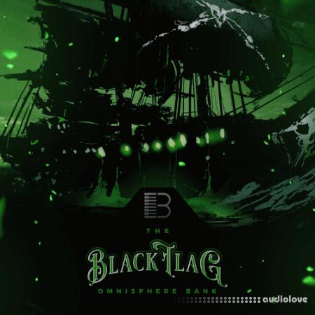 Brandon Chapa Black Flag