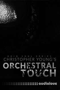 8Dio Soul Series Christopher Young: Orchestral Touch
