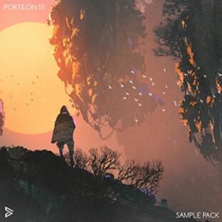 Digital Felicity PORTEON III
