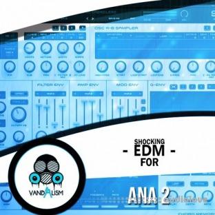 Vandalism Shocking EDM For ANA 2