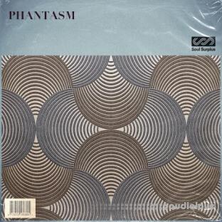 Soul Surplus Phantasm