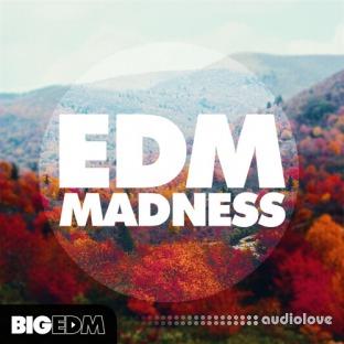 Big EDM EDM Madness