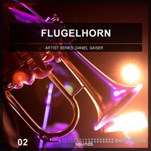 Image Sounds Flugelhorn 2