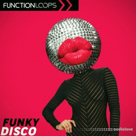 Function Loops Funky Disco