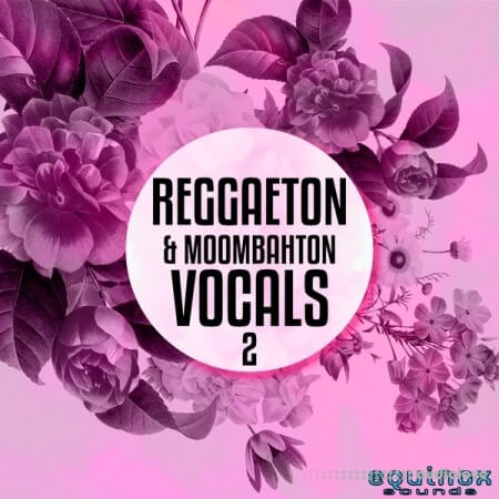 Equinox Sounds Reggaeton and Moombahton Vocals Vol.2