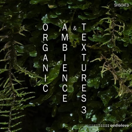 ShamanStems Organic Ambience and Textures 3