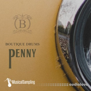 Musical Sampling Boutique Drums Penny
