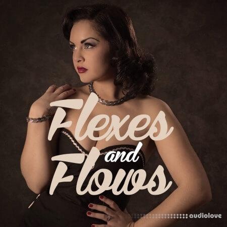 ProDrumLoops Flexes and Flows