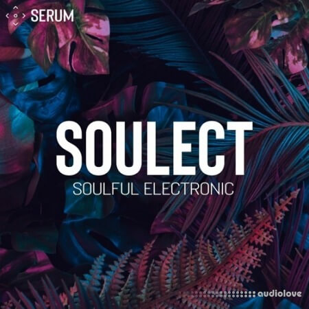 SynthHacker Soulect For Serum