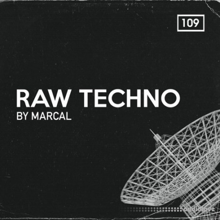 Bingoshakerz Raw Techno By Marcal