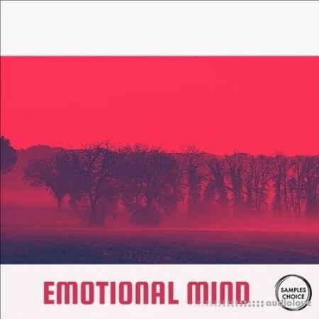 Samples Choice Emotional Mind