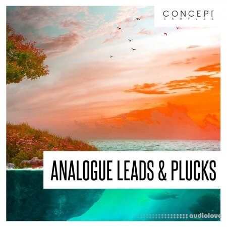 Concept Samples Analogue Leads and Plucks WAV