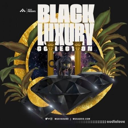 MSXII Black Luxury Collection