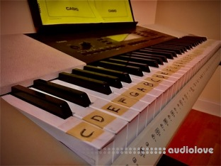 Manni Simon's School of Arts and Fun Music Theory Fundamentals for Songwriting