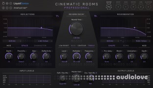 LiquidSonics Cinematic Rooms Professional