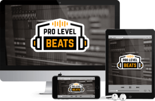 Pro Level Beats by Simon Servida