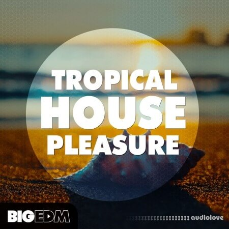 Big EDM Tropical House Pleasure
